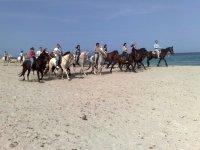 Excursion through the beach by horse