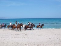 excursion por la playa a caballo