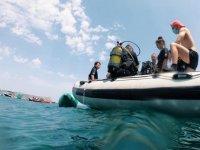 Submarinismo en grupos por Alicante