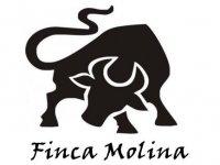 Finca Molina Capeas