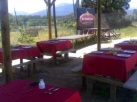 Tables in the eating area