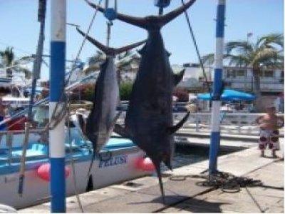 Disfruta Gran Canaria Pesca