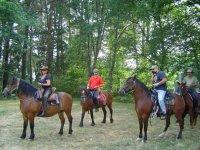 ven a disfrutar de nuestros mejores caballos