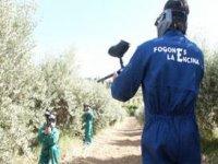 Paintball por los campos de olivos