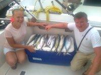 捕捞产量在塔拉戈纳塔拉戈纳塔拉戈纳