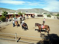 Equitacion en pista en Fuerteventura