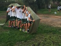 营地的团体动态