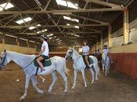 内径的骑马运动