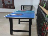 mesa pig pong