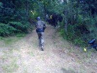 Adentrandose en el bosque