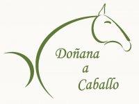 Doñana a caballo