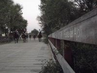 Por el puente del Ajoli