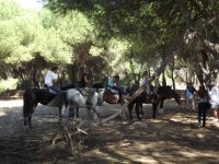 Parada en el bosque a caballo
