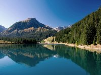 discover the beauty of arosa