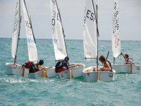 学生帆船赛帆船队工作组班