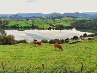 Landscapes of Cantabria