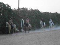 Excursiones a caballo en el recinto