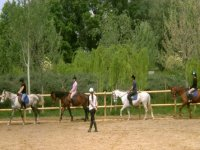 Aprendiendo a dominar a los caballos