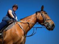 Equestrian activities in Deva