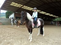 Lecciones de equitacion para peques en Deva