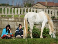 Sitting with the horse in Deva