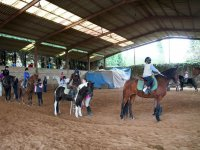 Horseback riding on the Deva track