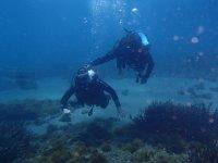 Buceando por el fondo marino de las playas de El Ejido
