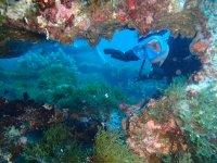 Buceando por el Mediterráneo con amigos