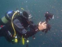 Por las profundidades el Mediterráneo en una actividad de buceo