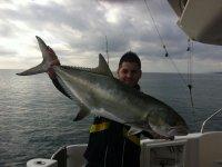 palometon pescado al curri de costa