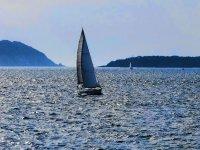 最佳的浏览体验帆船航海
