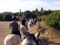 骑马游览该区域