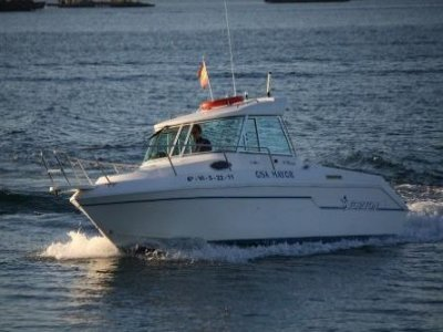 Alvamar Náutica Paseos en Barco