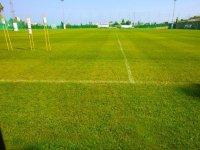 campo de futbol de cesped