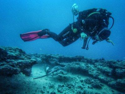 Jandía Divers