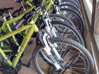 布尔戈斯阿马亚自行车出租