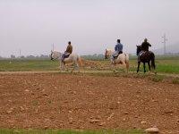 disfrutando con nuestros caballos