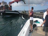 Tirando de la caña con los peces