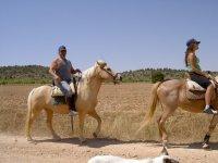 probando los caballos