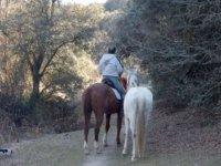 enjoying a horse ride