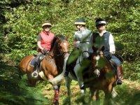 Rutas a caballo por la Sierra madrileña