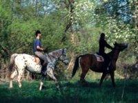 Senderismo y caballos