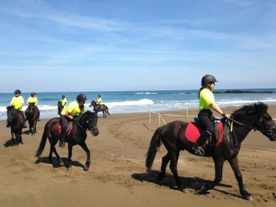 Pack 12 horse riding classes in English in Zestoa