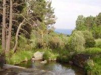 Río Valdeascas.