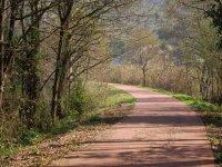 MTB roads