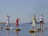 表和桨桨冲浪家庭