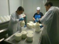 从高处传统queseria使得我们的奶酪