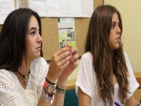 在vera学习英语