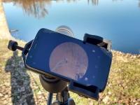 Observacion ornitologica