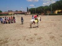 Juegos con ponys en el campamento de Madrid